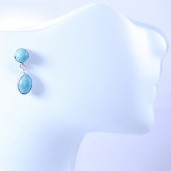 Sterling silver earrings with turquoise stones